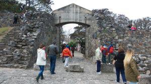 Portón de Campo